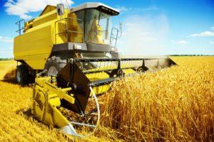 Getreidebauer bei der Ernte