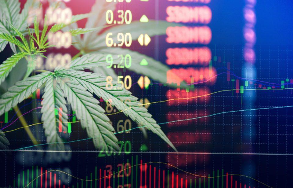 in Cannabis investieren